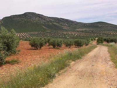 Sierra de Herencia 531265787_f6b2e5e017_o.jpg