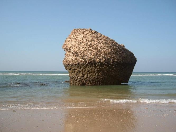 torre de la higuera sevillasecreta.com playa1