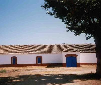 bodega-los-isla-villarta-de-san-juan